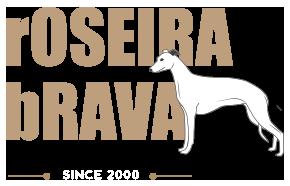 Roseira-Brava